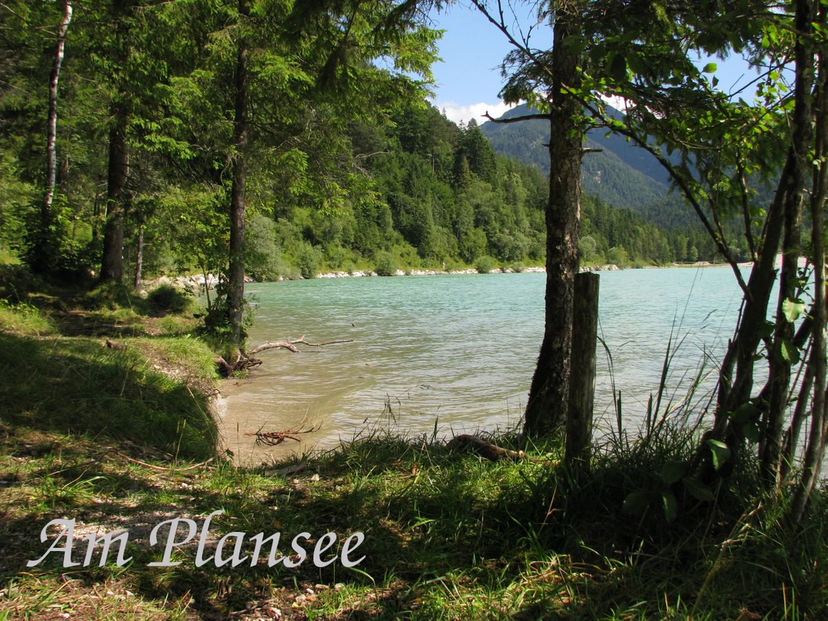 Plansee3